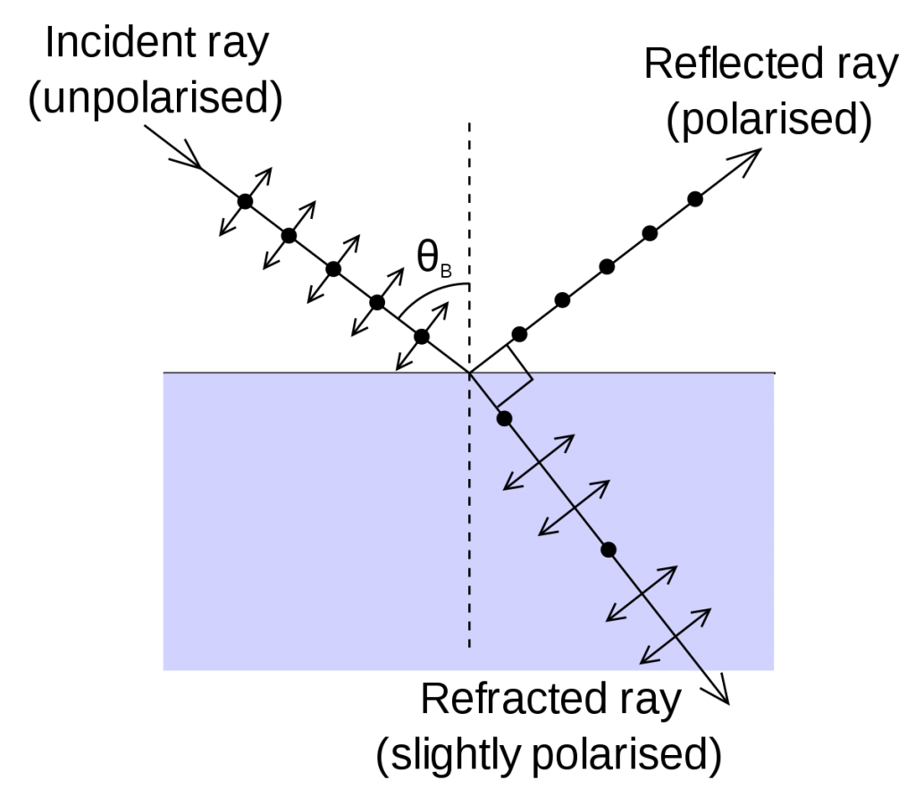 Brewster's angle and the state of each light ray involved in the Brewster's Law experiment.