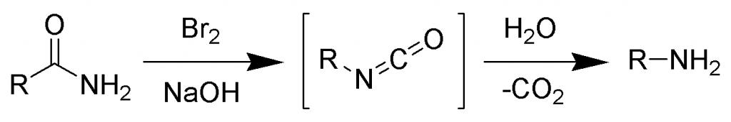Hoffmann Bromamide Reaction