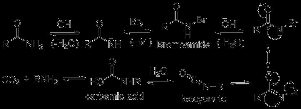 Hofmann Bromamide Reaction Mechanism