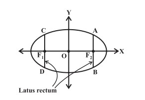 The latus rectum of an ellipse, in standard form.